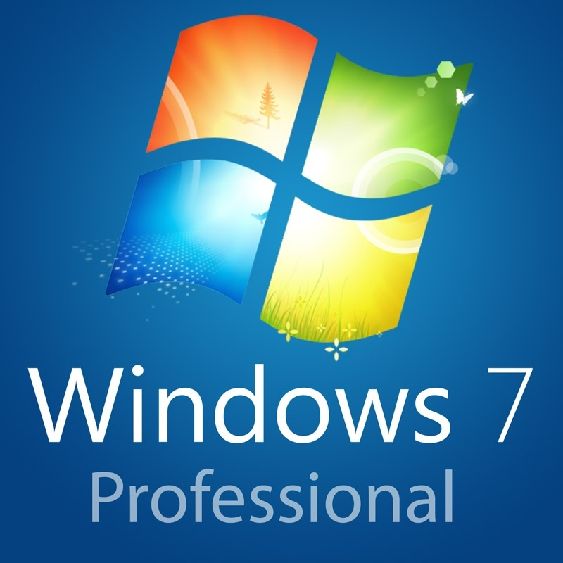 Programas de Windows Professional Corporate